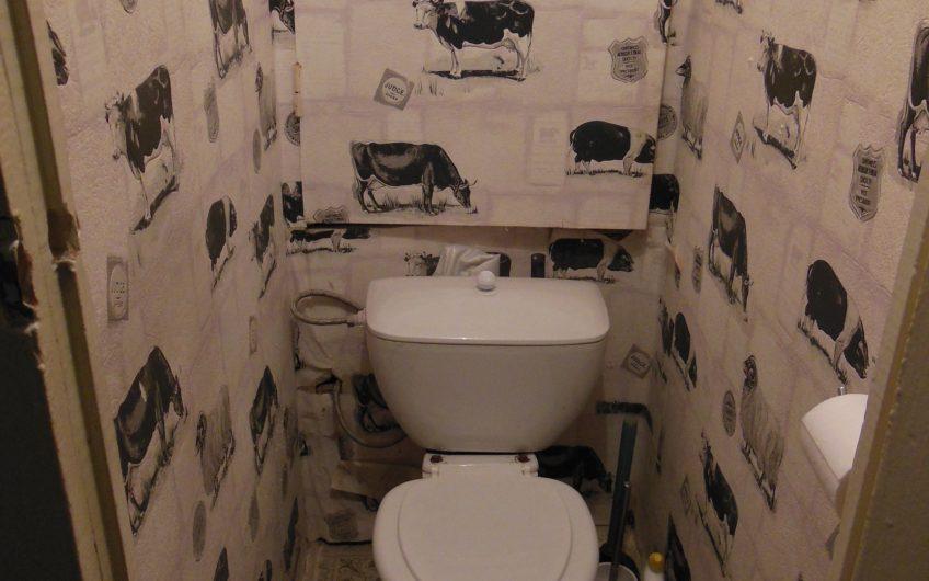 1 комнатная квартира в Домодедово, ул. Речная, д.16